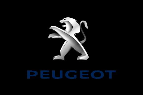 PEUGEOT(プジョー)の地デジ取り付け